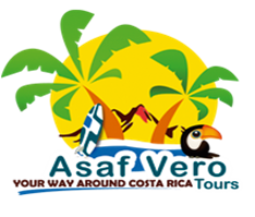 ASAF VERO TOURS