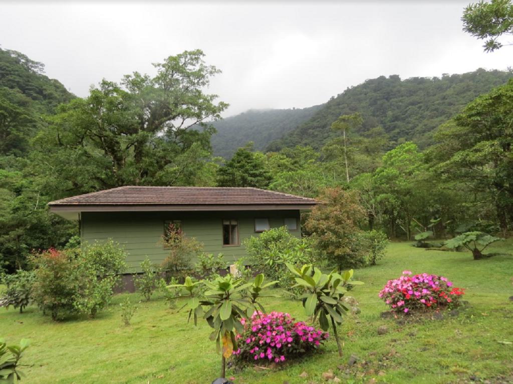 El Silencio Lodge & Spa tiene espectaculares bungalows en un impresionante complejo hotelero.