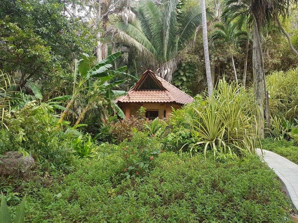 בונגלו במלון אילנג אילנג חוף מונטזומה קוסטה ריקה