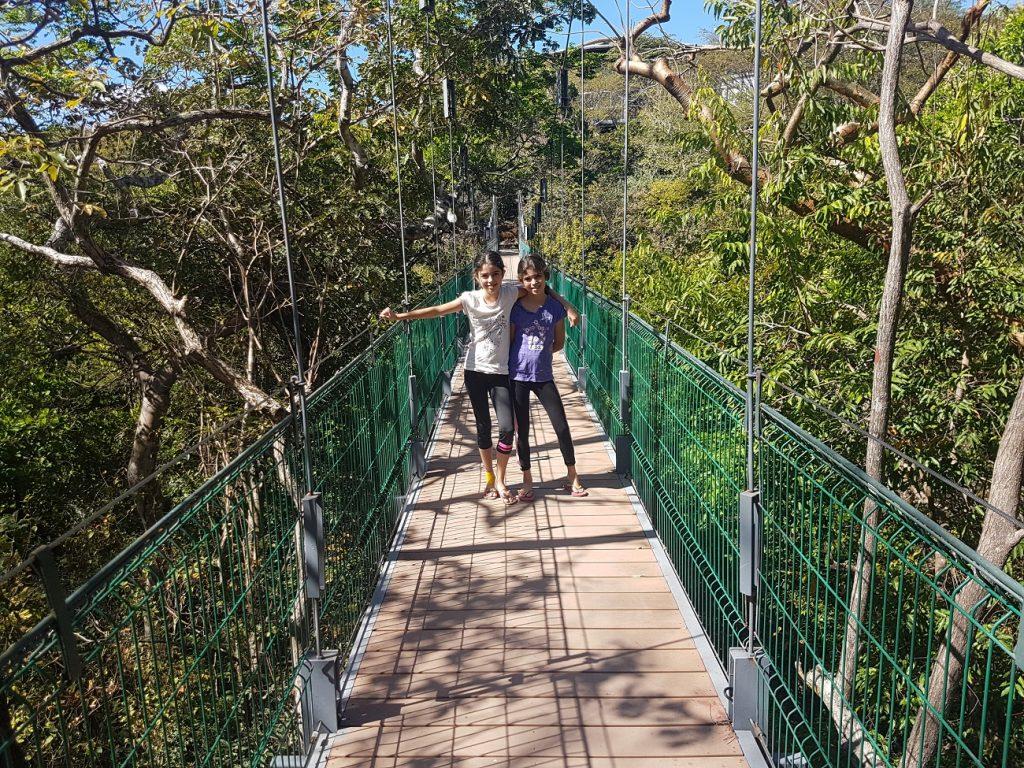 גשר תלוי בריו פרדידו בקוסטה ריקה
