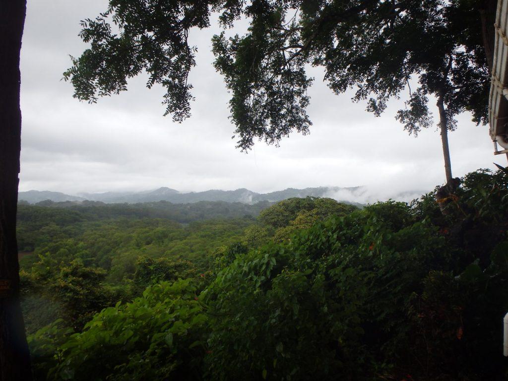 הטבע הבלתי נגמר בנוסארה קוסטה ריקה