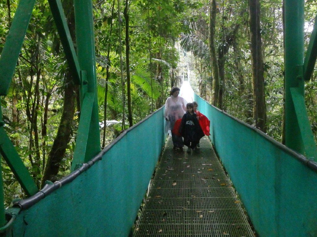 חוויה משפחתית בקוסטה ריקה, גשר תלוי במונטה ורדה