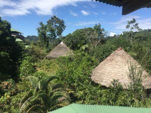 טיולי טבע בקוסטה ריקה