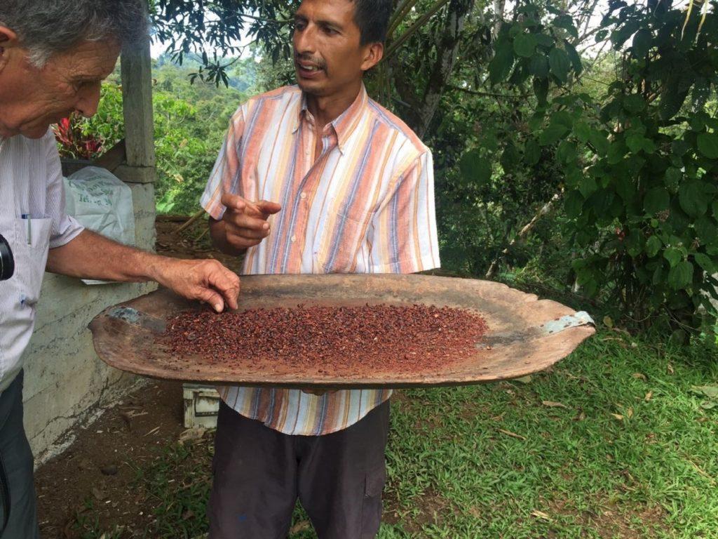 תהליכי הכנת קפה בקוסטה ריקה